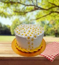 Papatya Bahçesi Pasta
