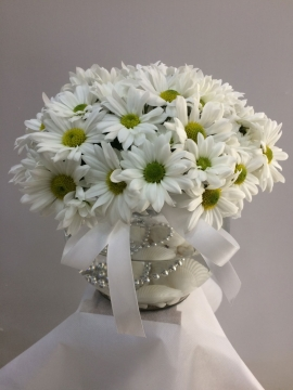 Papatya Çiçeği Fanusta