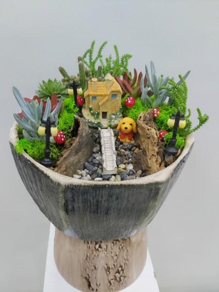 Çiçek Bahçesi Teraryum