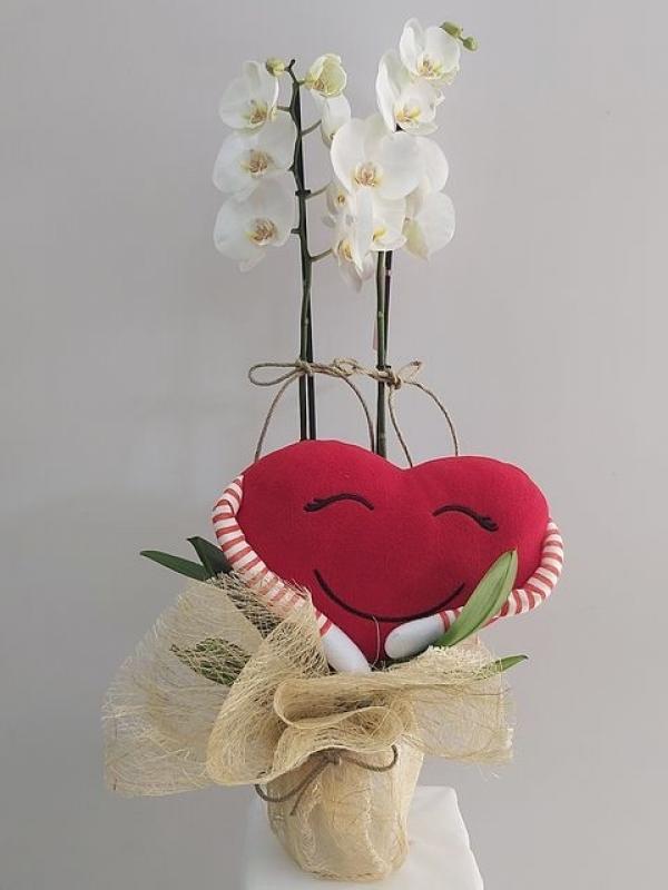Beyaz Orkide Kalp
